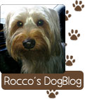 Check in with Rocco at Hobby Hill Florist
