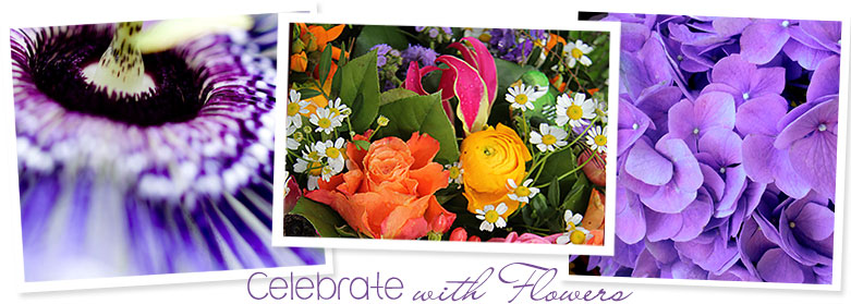 Hobby Hill Florist, your flower shop in Sebring Florida