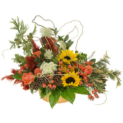 Fall Favorites from your Sebring, Florida florist