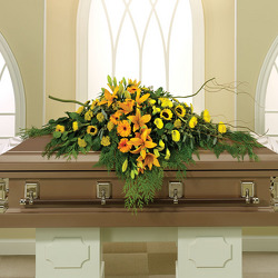 Nature's Glory Casket Spray from your Sebring, Florida florist