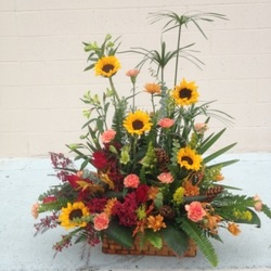 Rustic Autumn Sympathy Basket from your Sebring, Florida florist