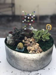 Fairy Garden from your Sebring, Florida florist