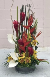 Perfectly Tropical from your Sebring, Florida florist