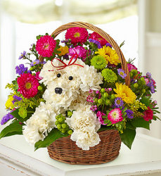a-DOG-able in a Basket from your Sebring, Florida florist