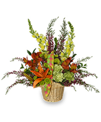 Basket Of Fall from your Sebring, Florida florist
