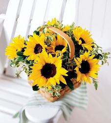 Basket of Sunshine from your Sebring, Florida florist