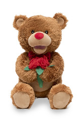 Beary Smooth from your Sebring, Florida florist