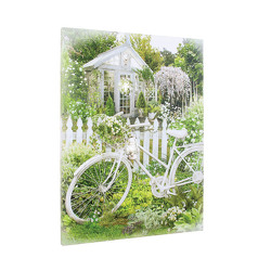Lighted Bicycle Garden Canvas from your Sebring, Florida florist
