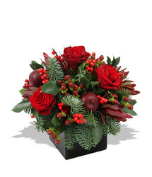 Christmas Cubed from your Sebring, Florida florist