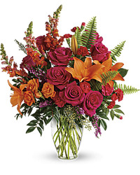 Color Punch from your Sebring, Florida florist