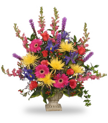 Uplifting Condolences from your Sebring, Florida florist