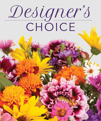 Designer's Choice from your Sebring, Florida florist