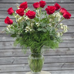 A Dozen Red Roses With Waxflower from your Sebring, Florida florist