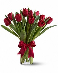 Twelve Tulips Arranged from your Sebring, Florida florist