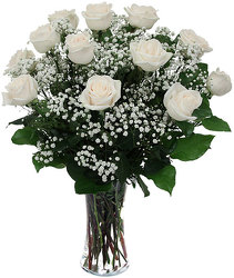 Dozen White Roses Arranged from your Sebring, Florida florist