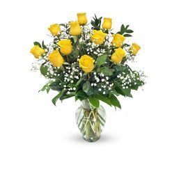 Dozen Yellow Roses Arranged from your Sebring, Florida florist