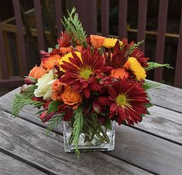 Fall Cube from your Sebring, Florida florist