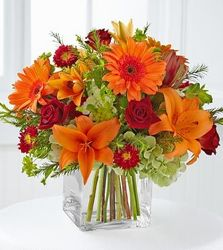 Tranquil from your Sebring, Florida florist