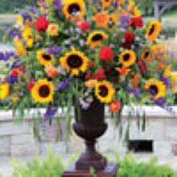 Stately Autumn Urn from your Sebring, Florida florist