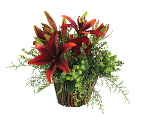 Finally Fall from your Sebring, Florida florist