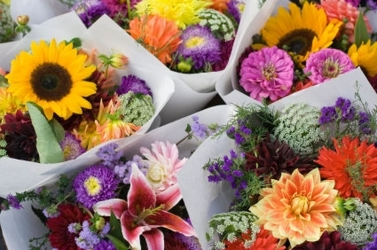 Flowers For A Year from your Sebring, Florida florist