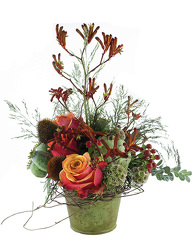 Forest from your Sebring, Florida florist