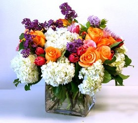 Vibrant  from your Sebring, Florida florist