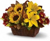 Golden Days Basket from your Sebring, Florida florist
