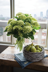 Green Miniature Hydrangeas in Glass from your Sebring, Florida florist