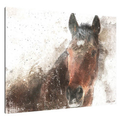 The Horse Canvas from your Sebring, Florida florist