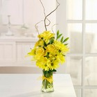 Sunshine Sparkle from your Sebring, Florida florist