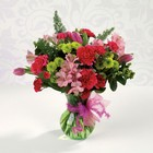 Nature's Glory from your Sebring, Florida florist