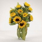 Sunflower Fields from your Sebring, Florida florist