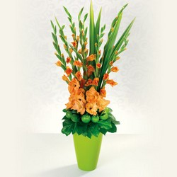 Glorious Gladiolus from your Sebring, Florida florist