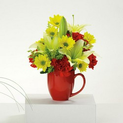 Good Morning Mug W/Coupon for Free Coffee! from your Sebring, Florida florist