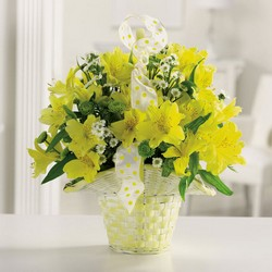 Mellow Yellow Basket from your Sebring, Florida florist