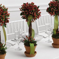 Hypericum Topiary Reception Arrangement from your Sebring, Florida florist