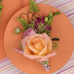 Delcate Rose Corsage from your Sebring, Florida florist