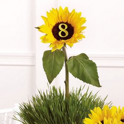 Table Marker Centerpiece from your Sebring, Florida florist