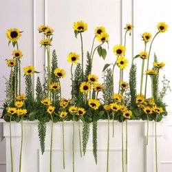Sunflower Altar Arrangement from your Sebring, Florida florist