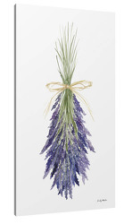Stems of Lavender Canvas from your Sebring, Florida florist