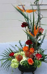 Tropical Estate from your Sebring, Florida florist