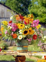 Bucket of Lively from your Sebring, Florida florist