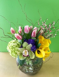 Modern One from your Sebring, Florida florist