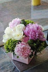 Peonies Squared from your Sebring, Florida florist