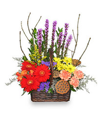 Out Of The Woods from your Sebring, Florida florist