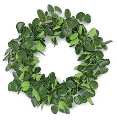 Pilea Wreath from your Sebring, Florida florist