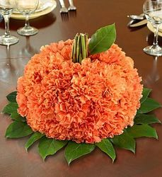 Pumpkin Of Carnations from your Sebring, Florida florist