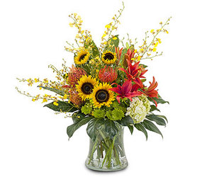 Definitely Sunny from your Sebring, Florida florist