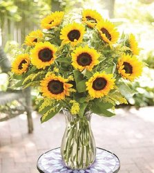 Savvy Sunflowers